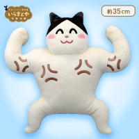 【B.ムキムキ】いらすとや枕にもなるBIGぬいぐるみ